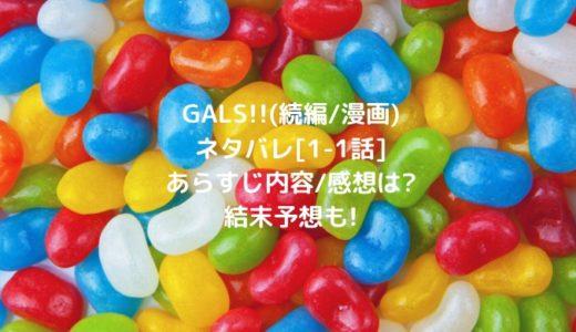 GALS!!(続編/漫画)ネタバレ[1-1話]あらすじ内容/感想は?結末予想も!