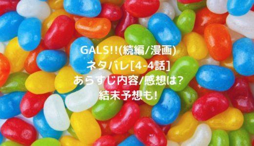 GALS!!(続編/漫画)ネタバレ[4-4話]あらすじ内容/感想は?結末予想も!