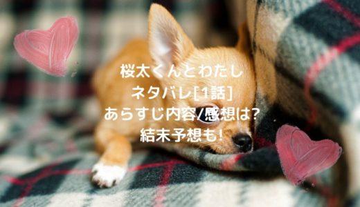 桜太くんとわたしネタバレ[1話]あらすじ内容/感想は?結末予想も!