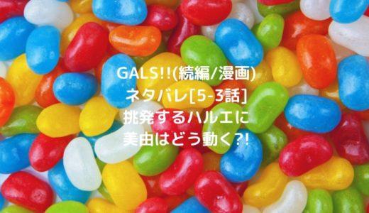 GALS!!(続編/漫画)ネタバレ[5-3話]挑発するハルエに美由はどう動く?!