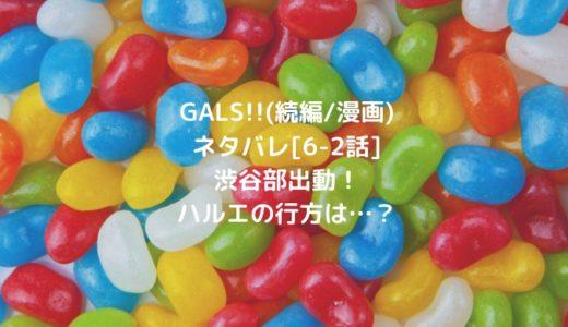 GALS!!(続編/漫画)ネタバレ[6-2話]渋谷部出動!ハルエの行方は…?