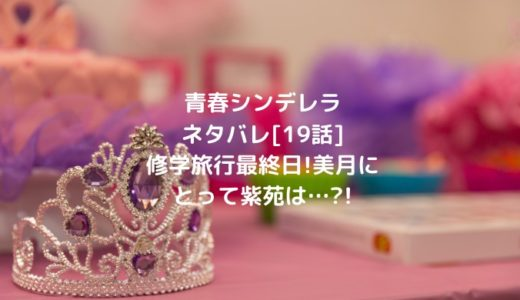 青春シンデレラネタバレ[19話]修学旅行最終日!美月にとって紫苑は…?!