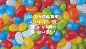 GALS!!(続編/漫画)ネタバレ[7-2話]傷付いた菜津と蘭の強い意志!