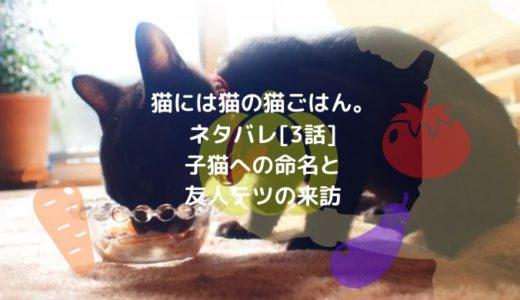猫には猫の猫ごはん。ネタバレ[3話]子猫への命名と友人テツの来訪