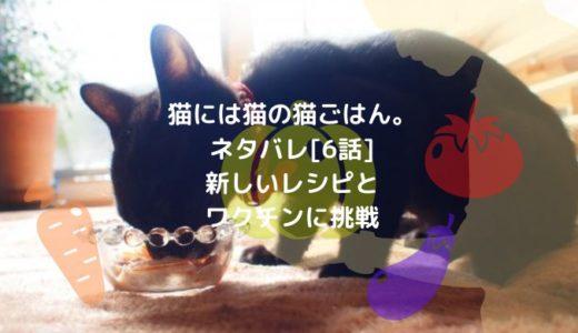 猫には猫の猫ごはん。ネタバレ[6話]新しいレシピとワクチンに挑戦