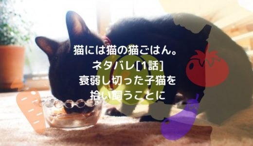 猫には猫の猫ごはん。ネタバレ[1話]衰弱し切った子猫を拾い飼うことに