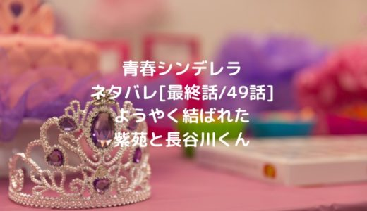 青春シンデレラネタバレ[最終話/49話]ようやく結ばれた紫苑と長谷川くん