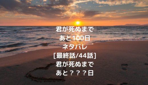 君が死ぬまであと100日ネタバレ[最終話/44話]君が死ぬまであと???日