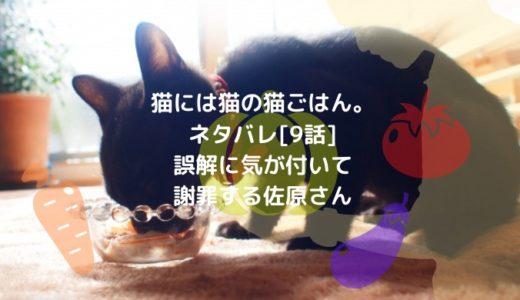 猫には猫の猫ごはん。ネタバレ[9話]誤解に気が付いて謝罪する佐原さん