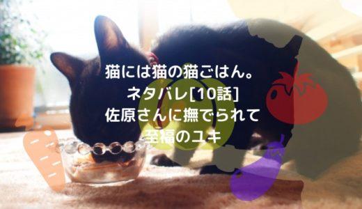 猫には猫の猫ごはん。ネタバレ[10話]佐原さんに撫でられて至福のユキ