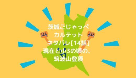 茨城ごじゃっぺカルテットネタバレ[14話]現在と小3の頃の、筑波山登頂