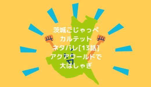 茨城ごじゃっぺカルテットネタバレ[13話]アクアワールドで大はしゃぎ
