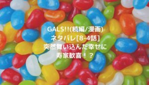 GALS!!(続編/漫画)ネタバレ[8-4話]突然舞い込んだ幸せに寿家歓喜!?