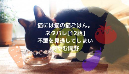 猫には猫の猫ごはん。ネタバレ[12話]不調を見逃してしまい悔やむ間野