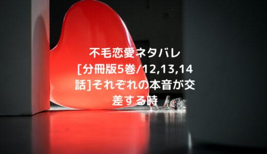不毛恋愛ネタバレ[分冊版5巻/12,13,14話]それぞれの本音が交差する時