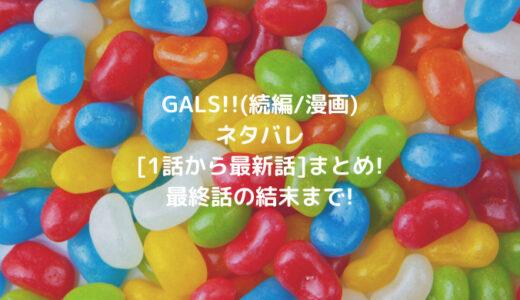 GALS!!(続編/漫画)ネタバレ[1話から最新話]まとめ!最終話の結末まで!