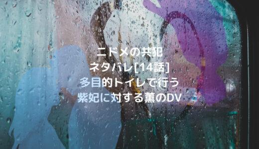 ニドメの共犯ネタバレ[14話]多目的トイレで行う紫妃に対する薫のDV