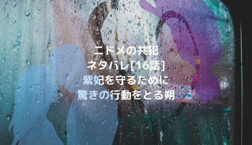 ニドメの共犯ネタバレ[16話]紫妃を守るために驚きの行動をとる朔
