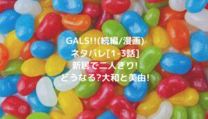 GALS!!(続編/漫画)ネタバレ[1-3話]新居で二人きり!どうなる?大和と美由!