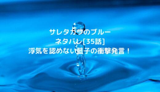 サレタガワのブルーネタバレ[35話]浮気を認めない藍子の衝撃発言!
