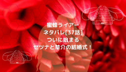 蜜蜂ライアーネタバレ[37話]ついに始まるセツナと草介の結婚式!