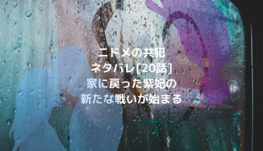 ニドメの共犯ネタバレ[20話]家に戻った紫妃の新たな戦いが始まる