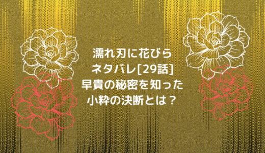 濡れ刃に花びらネタバレ[29話]早貴の秘密を知った小粋の決断とは?