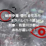 秘密中毒-堕ちる女たち-ネタバレ[1-1話]刑事・有里川沙都にあれが届いた!