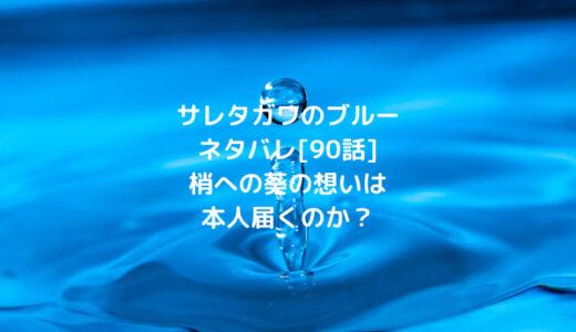 サレタガワのブルーネタバレ[90話]梢への葵の想いは本人届くのか?